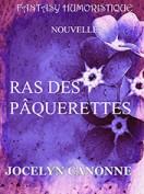 Ras Des Pâquerettes - Tellyon 2